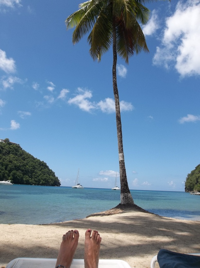 Our St. Lucia Honeymoon! 743
